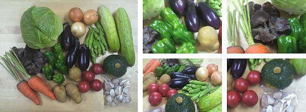 7月11日発送分の九州野菜セット